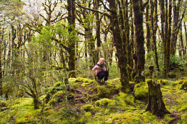 3-arthur-pass-national-park