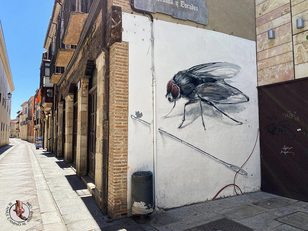 Arte urbano Zamora mural mosca