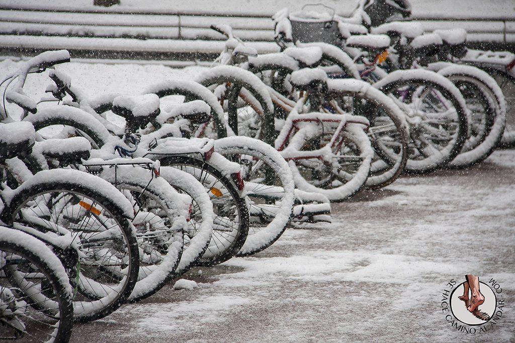 Bicicletas nieve Boulevard