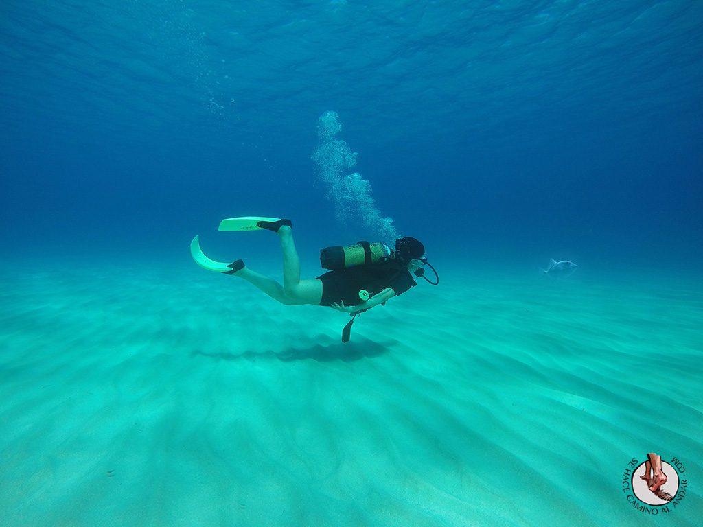 Buceo en Formentera