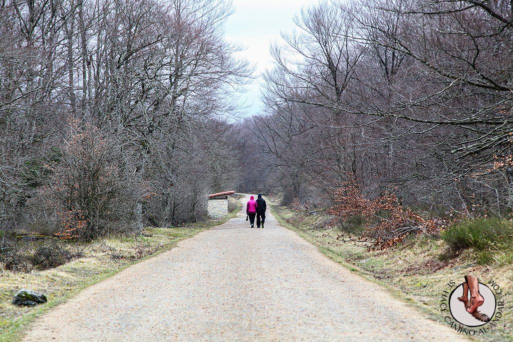 Camino Mirador del Nervión