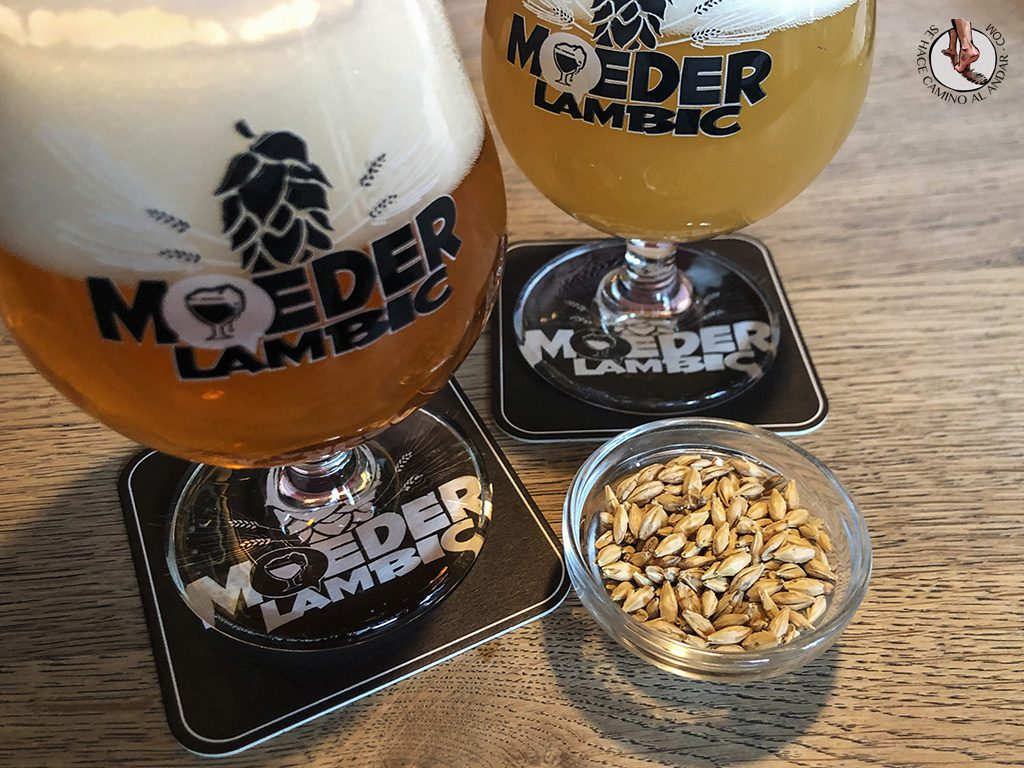 Cervecerias de Bruselas Moeder Lambic cerveza