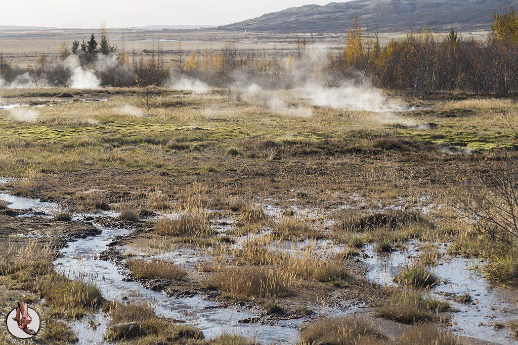 Circulo dorado Geysir humo