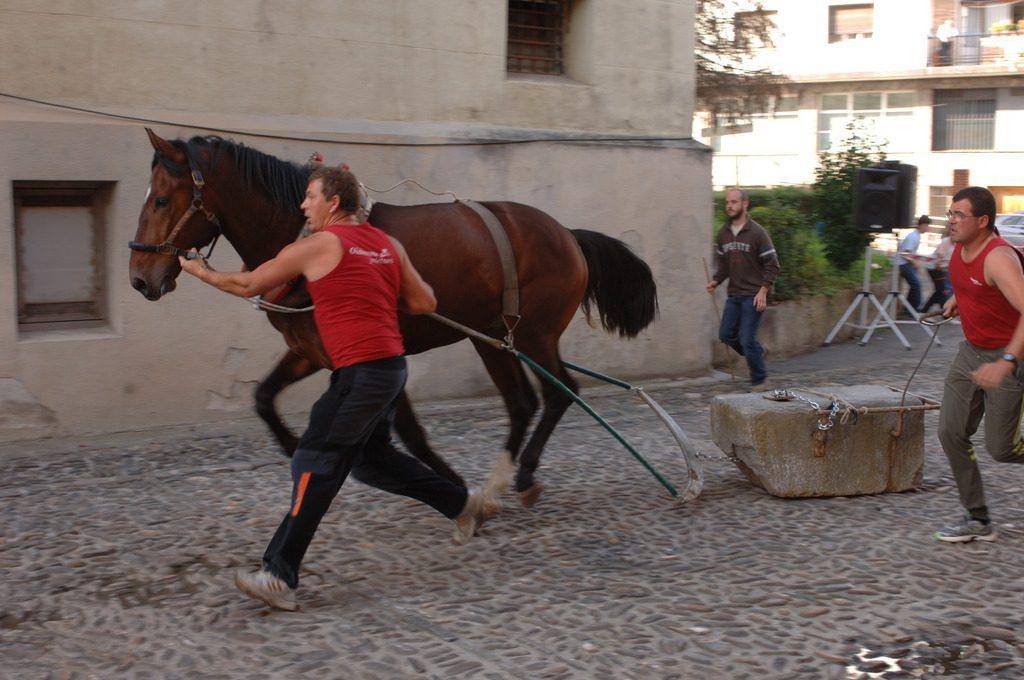 Deportes rurales vascos Herri Kirolak zaldi proba arrastre piedra caballos