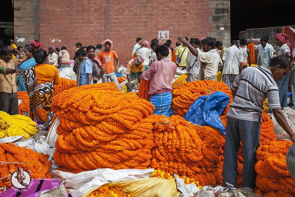 Flores para ofrendas mercado Calcuta