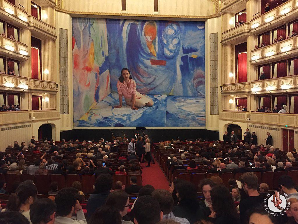 Función Opera Viena
