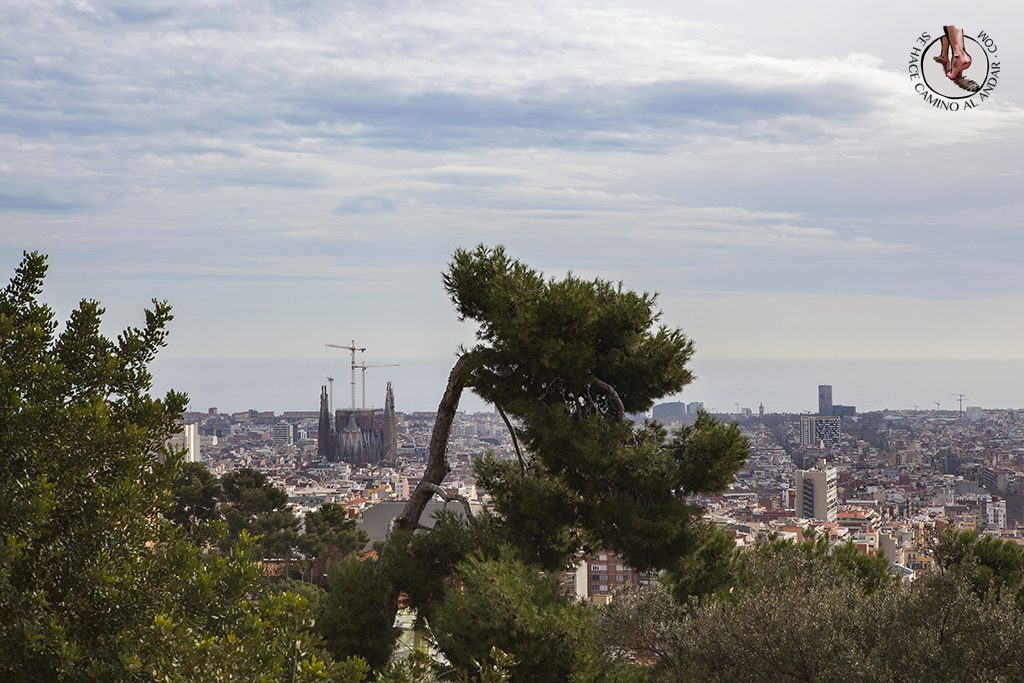 Jardin Park Guell Barcelona