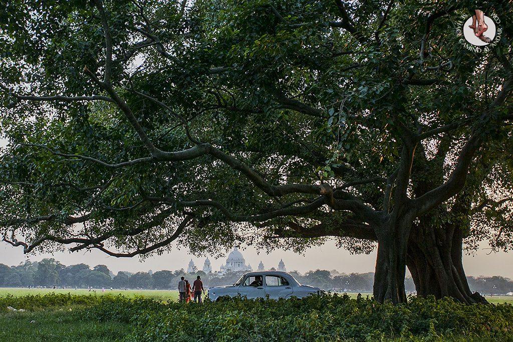 Parque Maidan Calcuta