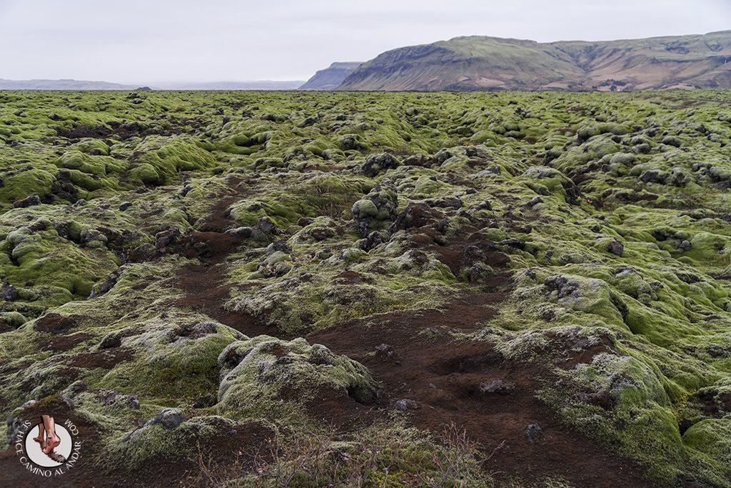 Ring Road 2-7 campo lava camino