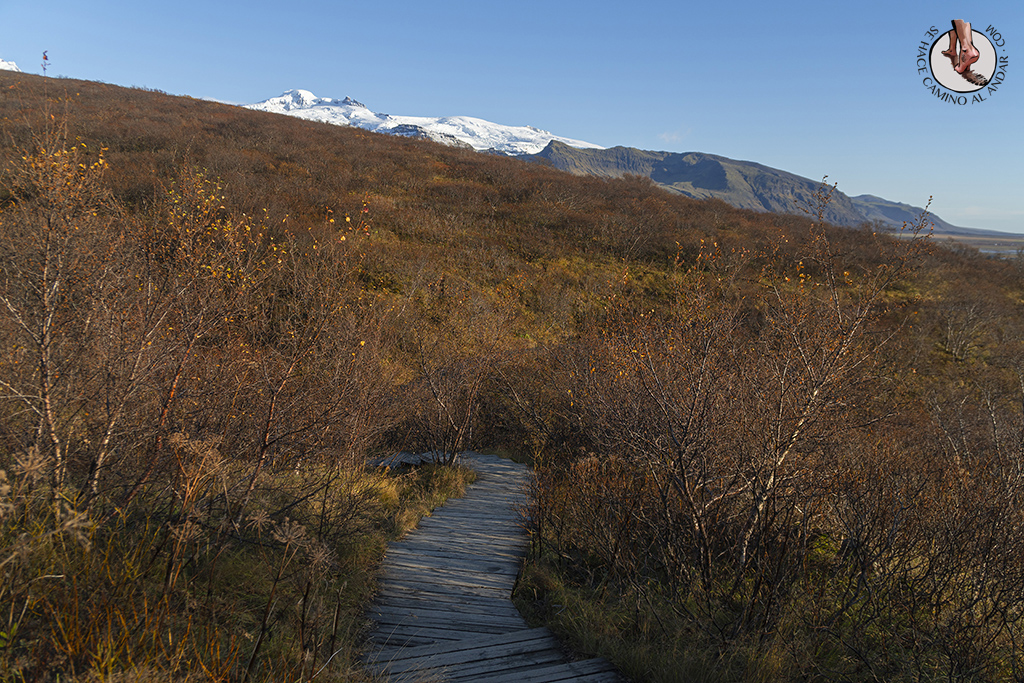 Ring Road 3-7 Cascada Svartifoss salida