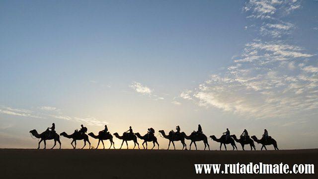 Ruta-del-Mate3