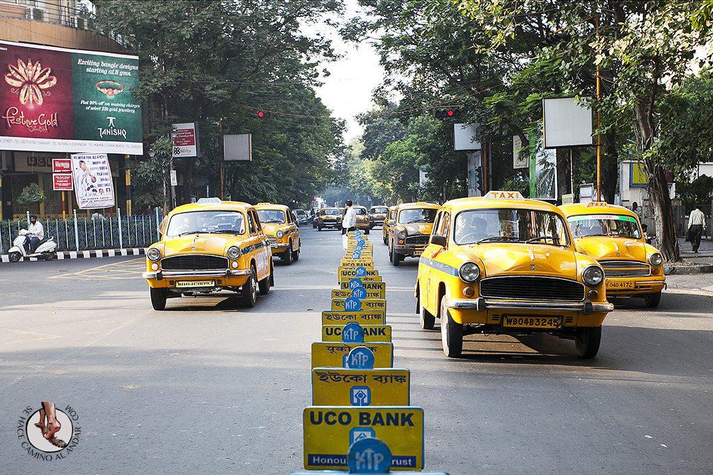 Taxis Ambassador Calcuta