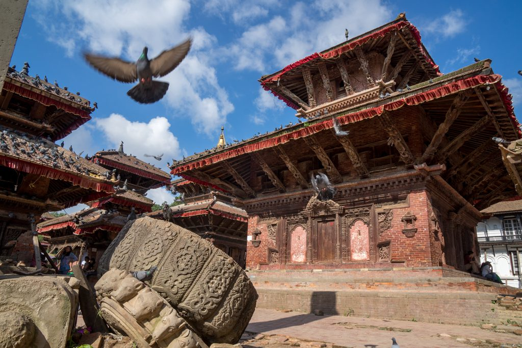 Templo India paloma