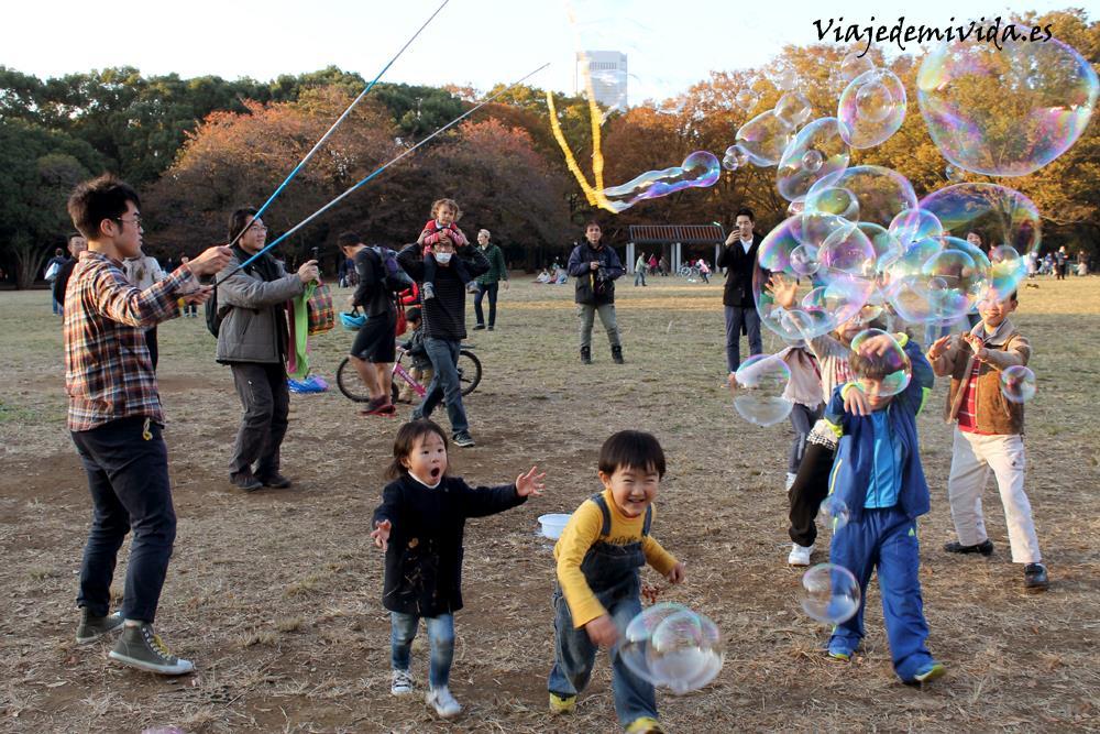 Viaje-de-mi-vida-Yoyogi-Tokio-Japon