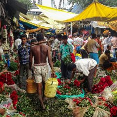 Perderse por el mercado de las flores de Calcuta