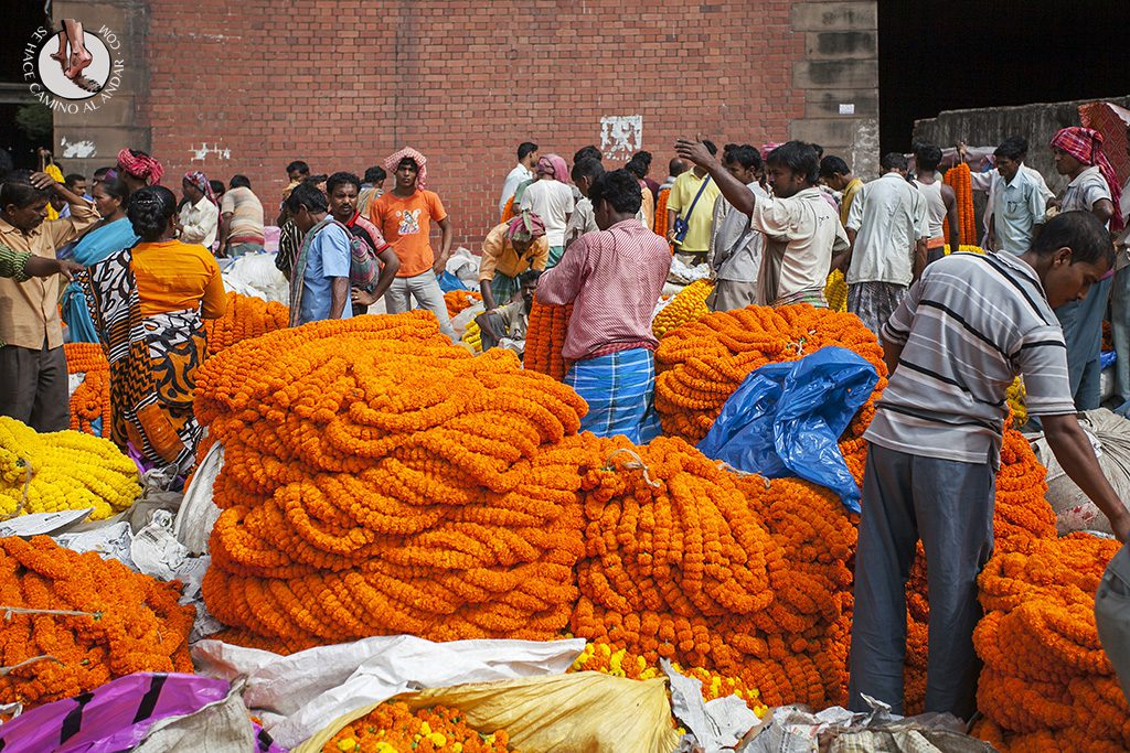 mercado flores calculta naranja