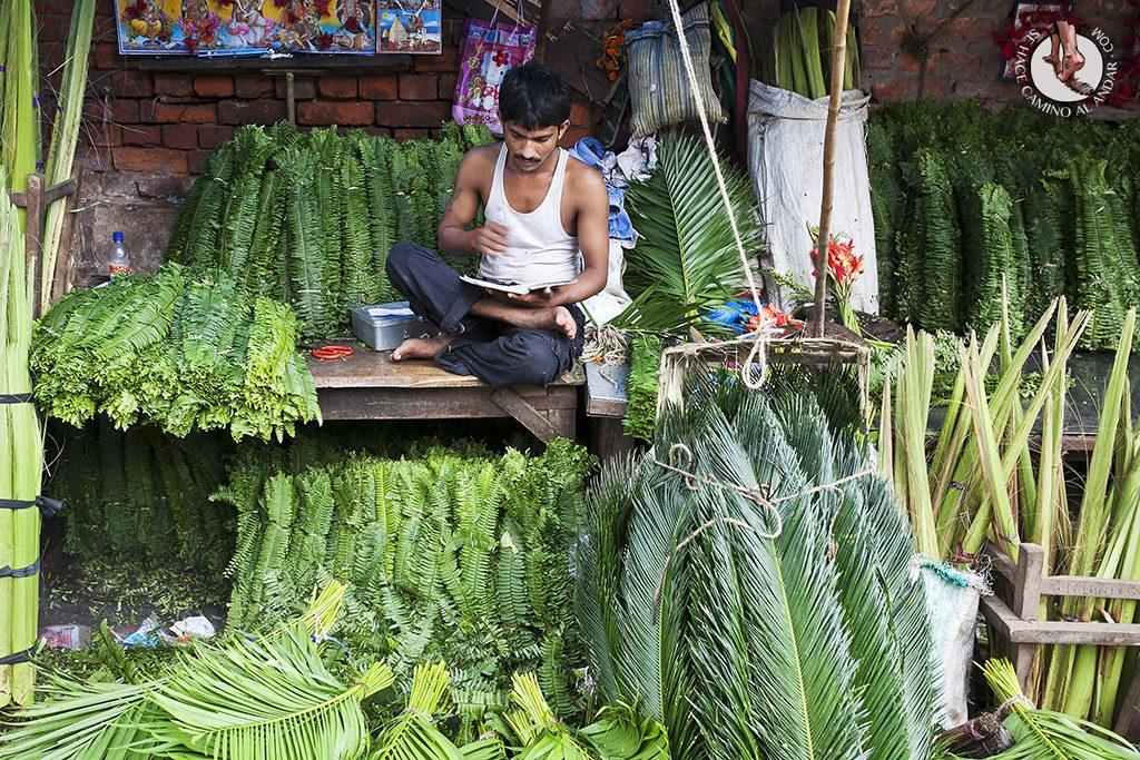 mercado flores calculta vendedor verde