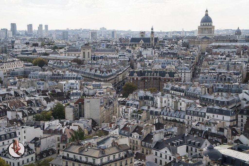 miradores de paris notredame edificios