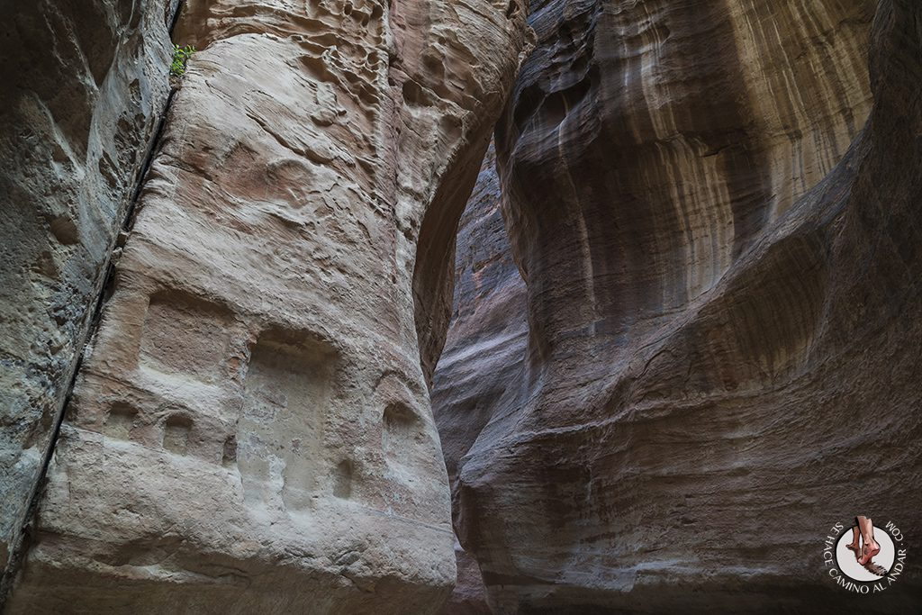 organizar viaje a jordania petra al siq
