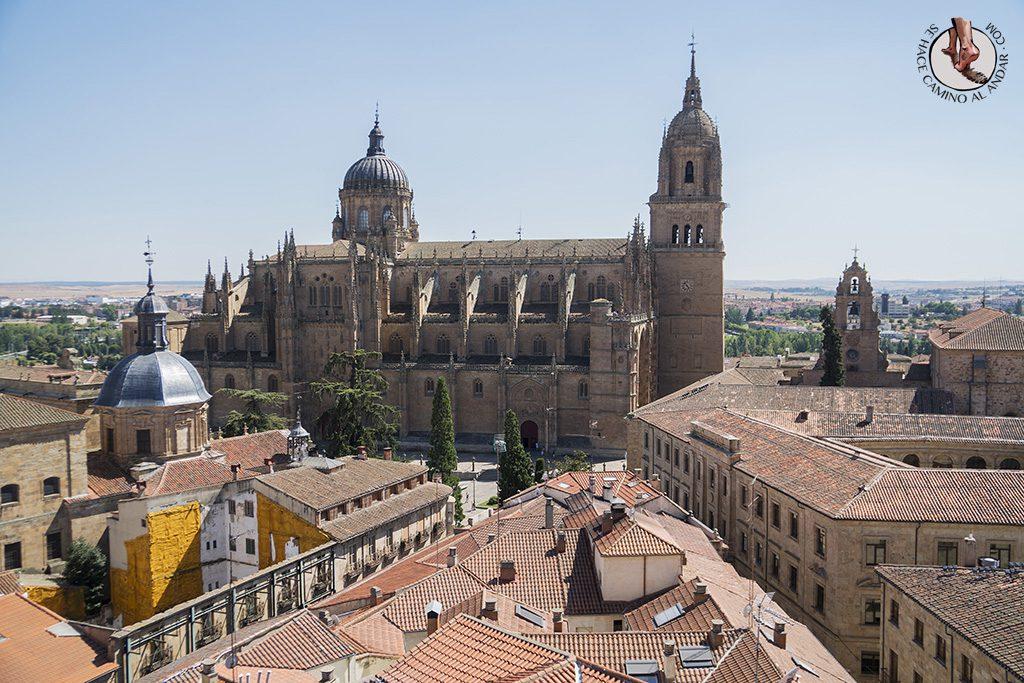 que ver en Salamanca Clerecia Scala Coeli vistas catedral