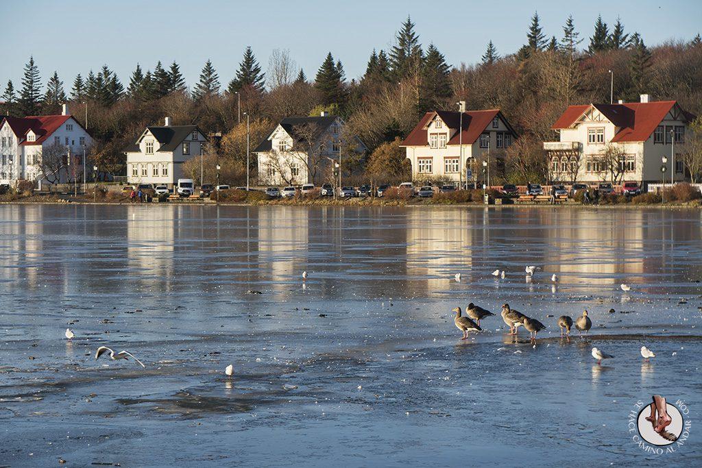 visitar reikiavik 1 dia Lago Tjornin