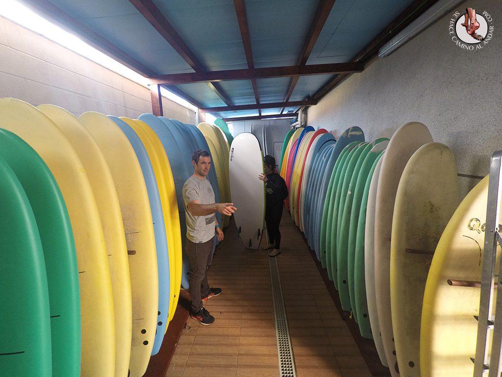 Art Surf Camp tablas surf