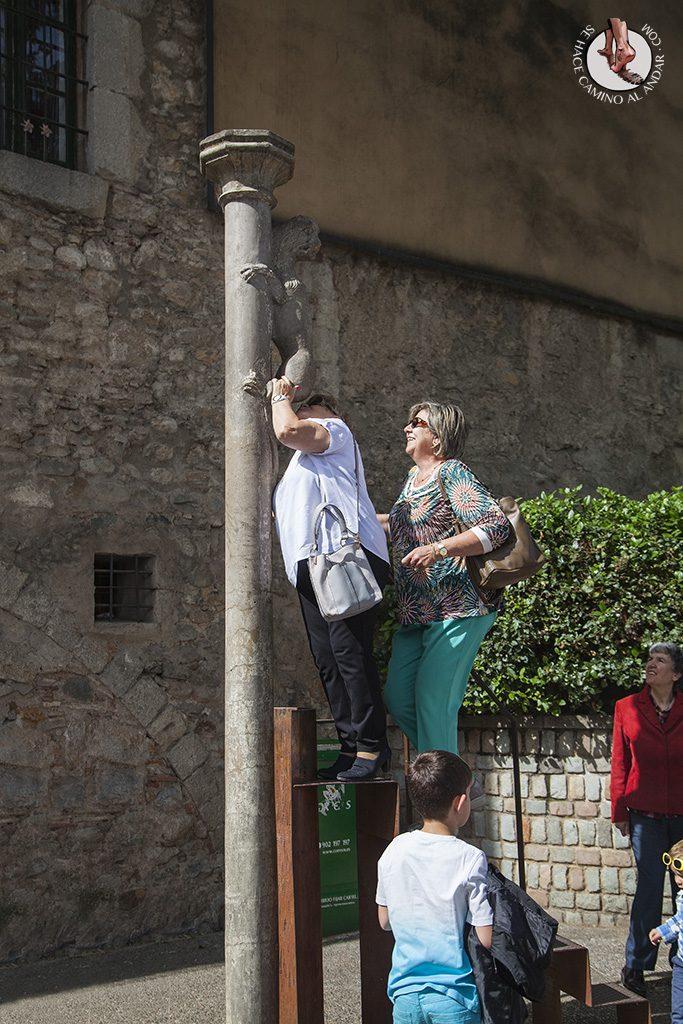 Besar el cuelo de la leona Girona