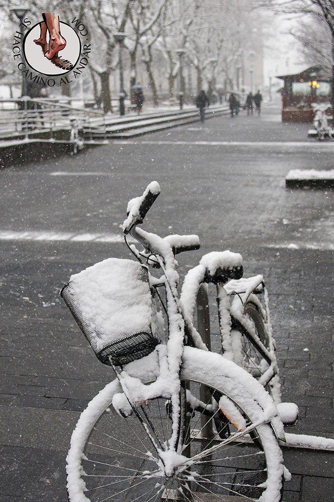 Bicicleta nieve Boulevard