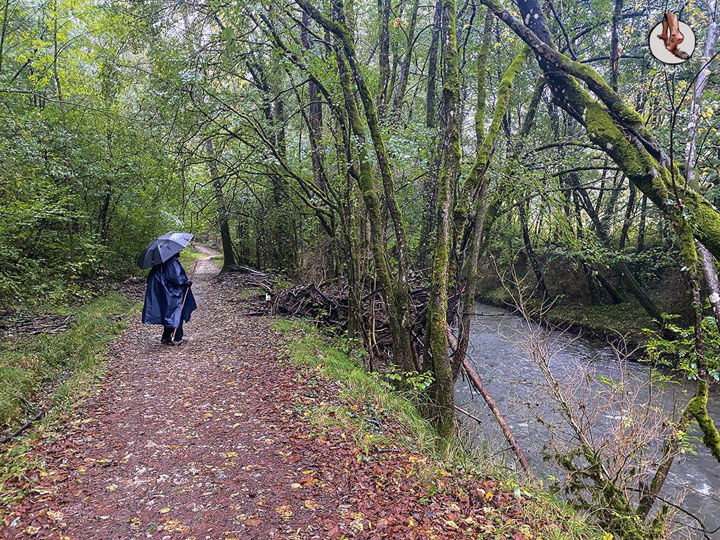 CS2 rio arga paseo
