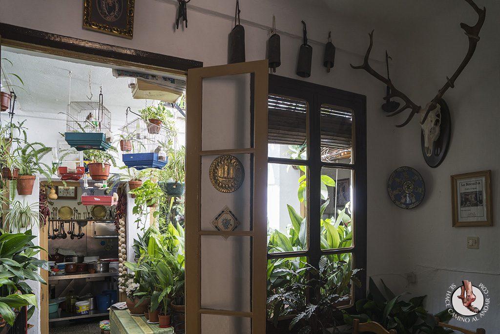 Casa Pepa Carratraca patio