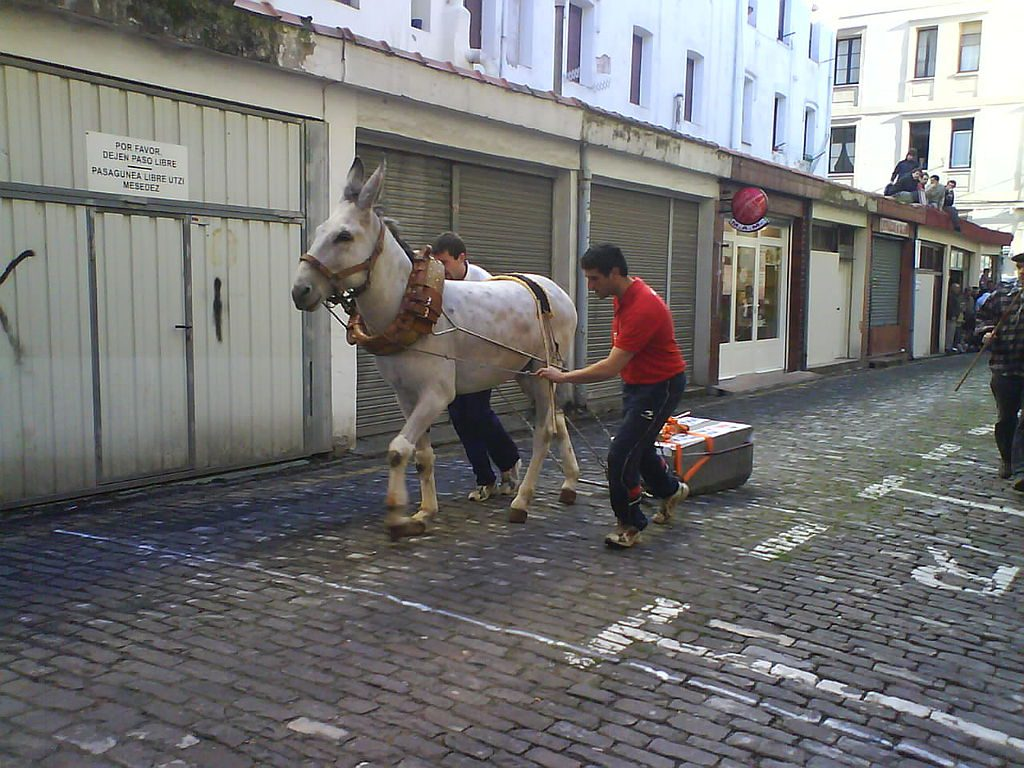 Deportes rurales vascos Herri Kirolak asto proba arrastre piedra burro