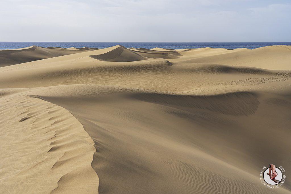 Dunas Maspalomas desierto Gran Canaria