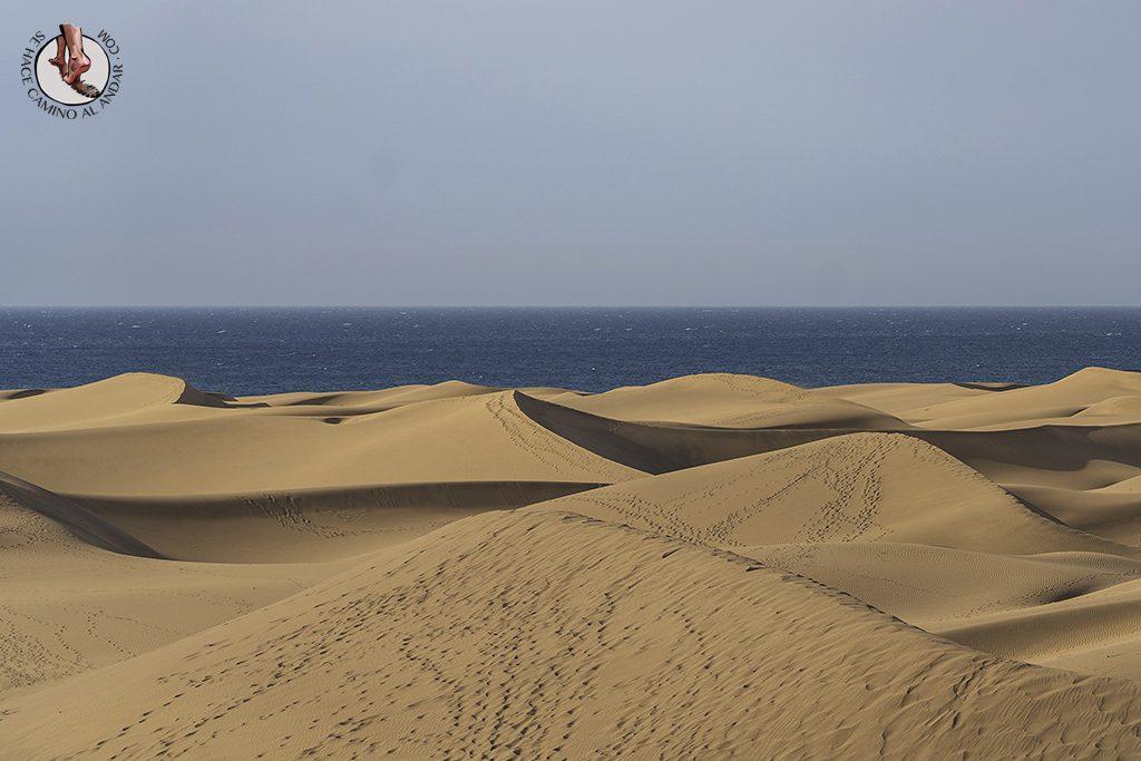 Dunas de Maspalomas desierto Gran Canaria mar