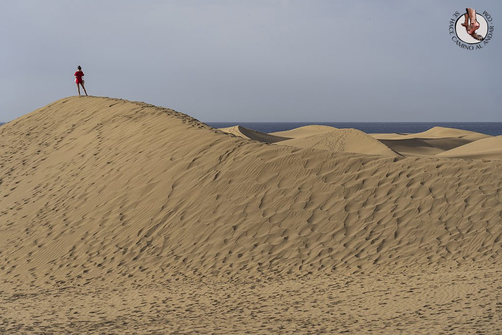 Dunas de Maspalomas desierto Gran Canaria vigilancia