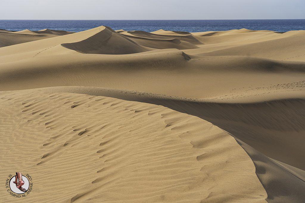 Dunas de Maspalomas desierto Gran Canaria