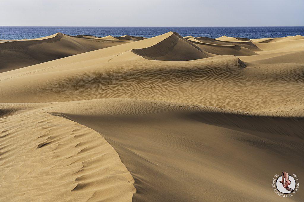 Gran Canaria dunas maspalomas mar