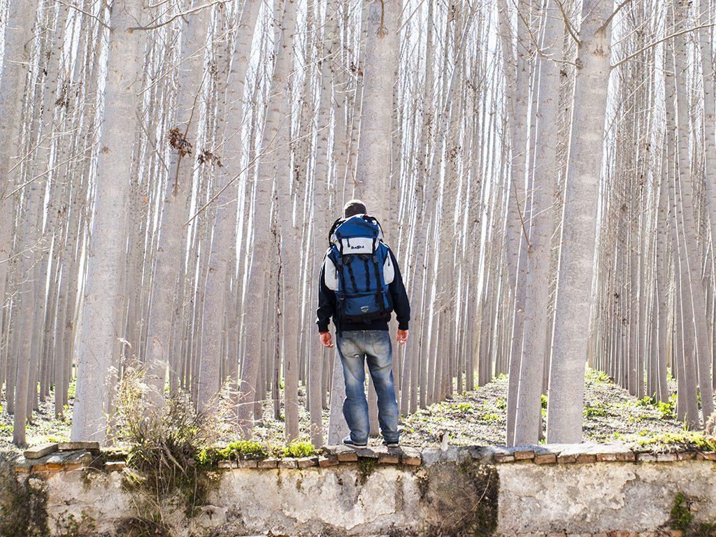 Inteligencia viajera viajero solitario