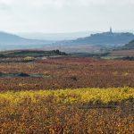 Laguardia, un pueblo medieval lleno de bodegas de fábula