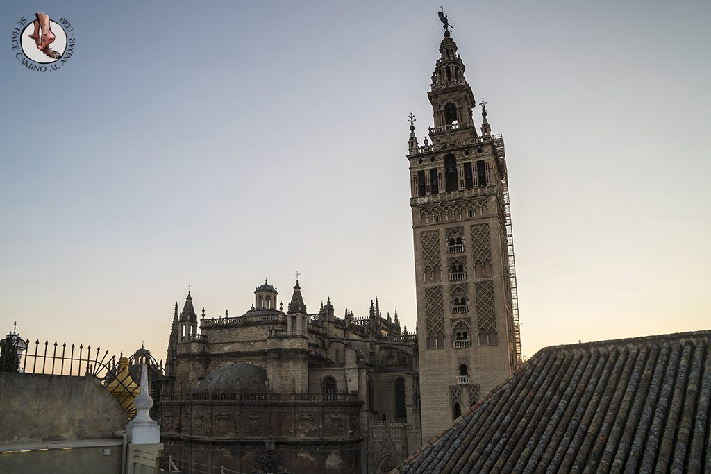 Miradores de Sevilla vistas Hotel Dona Maria