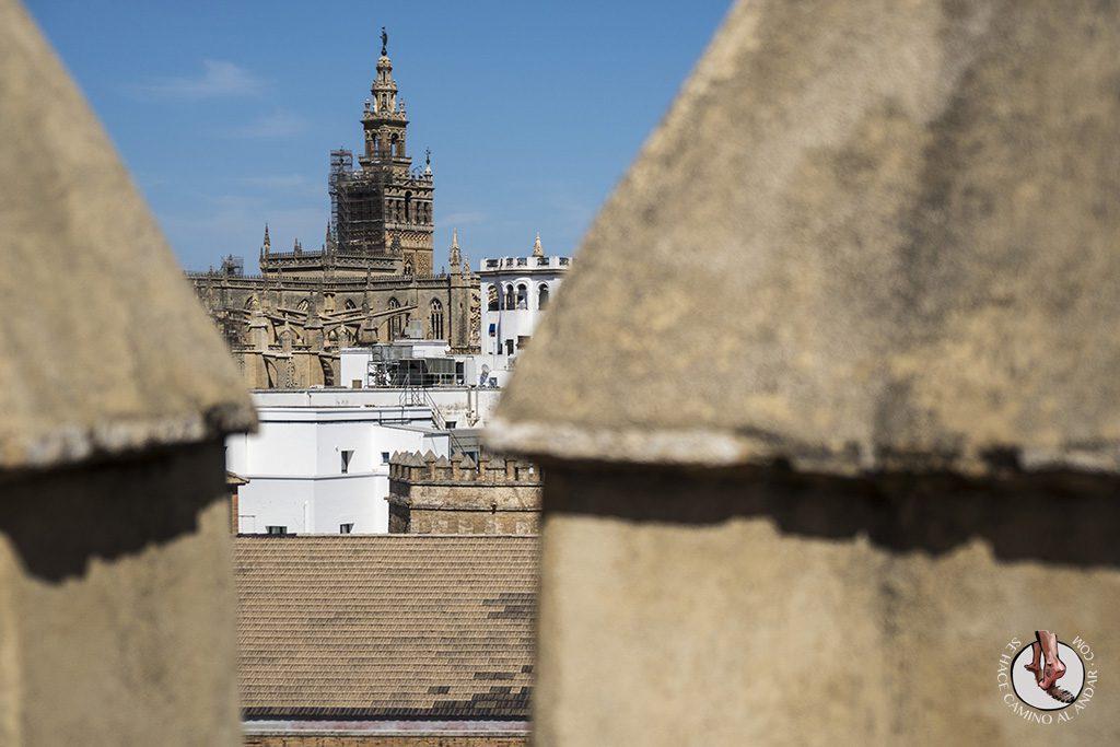 Miradores de Sevilla vistas Torre del Oro