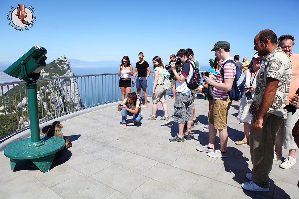 Mono personas Gibraltar