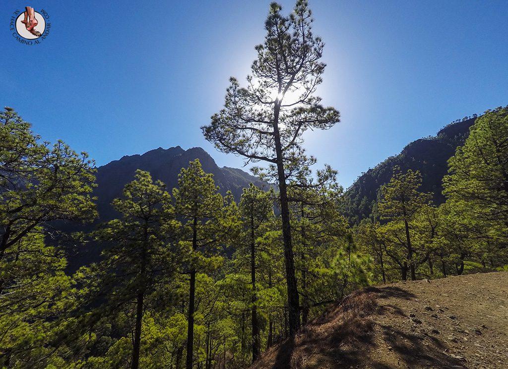 Parque Natural La Palma