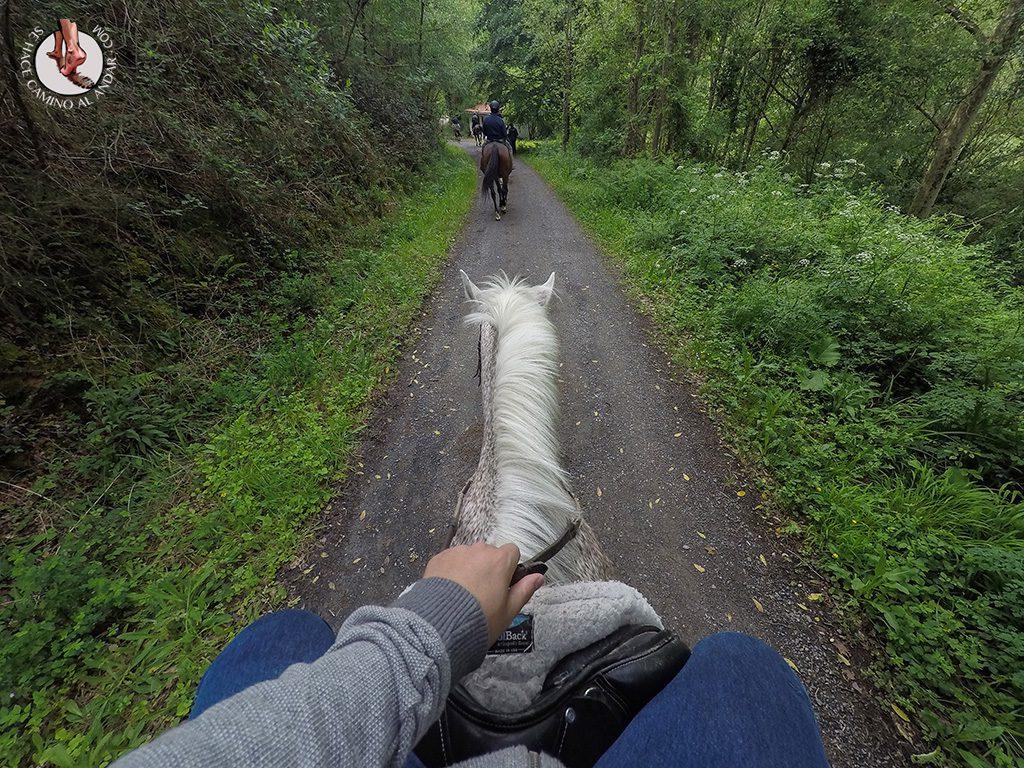 Paseo caballo Castillo Butrón en Gatika