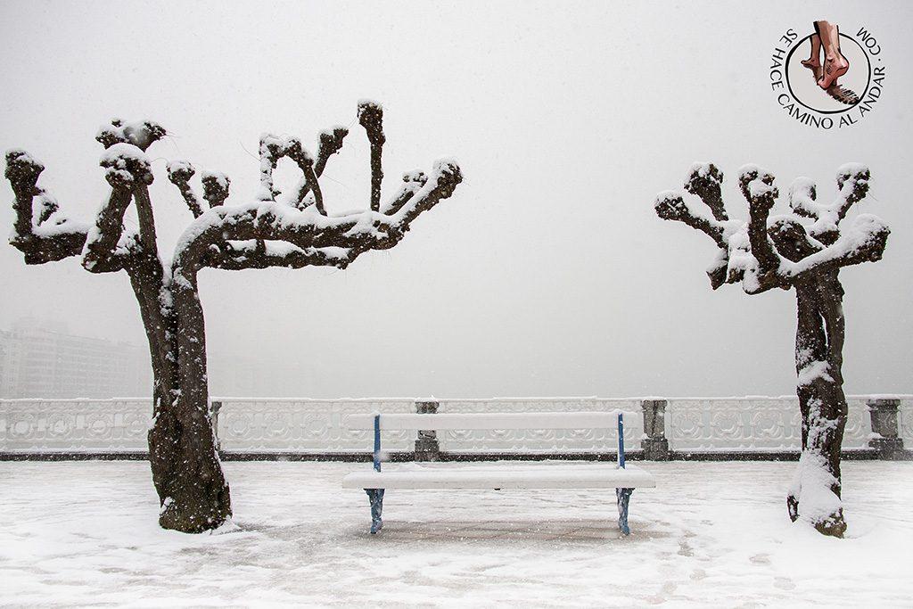 Paseo de la concha nevada