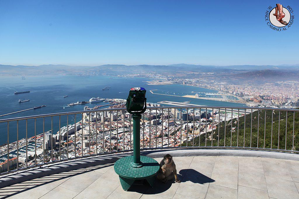 Personas mono Gibraltar