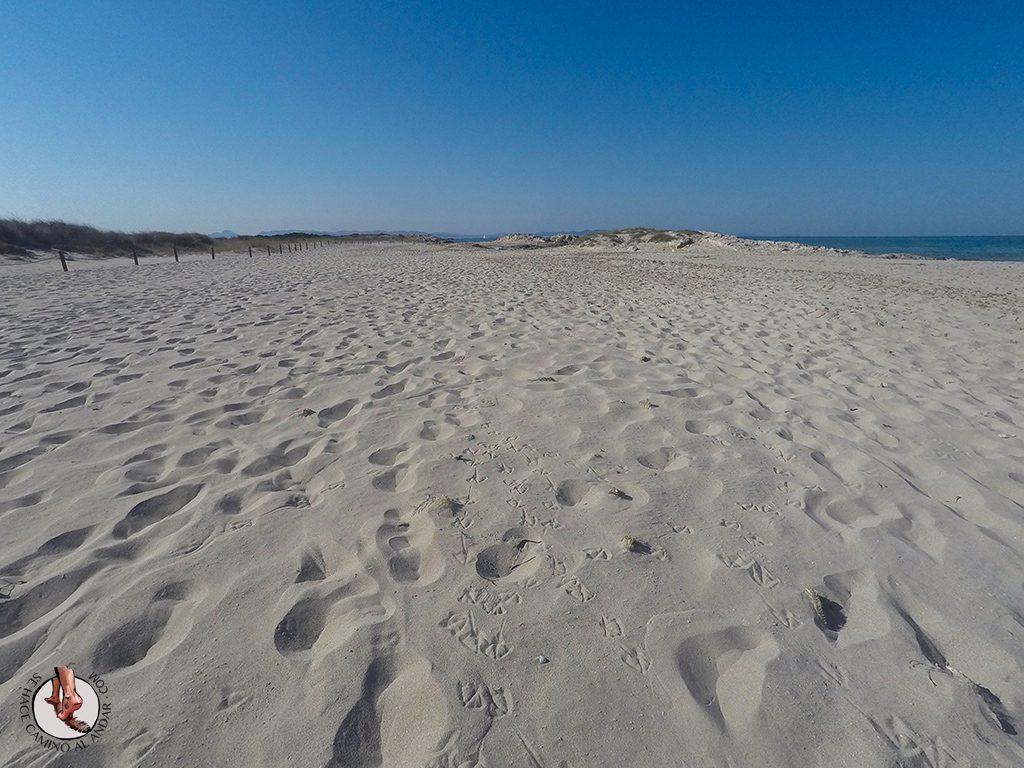 Playa Formentera Isla Espalmador arena blanca