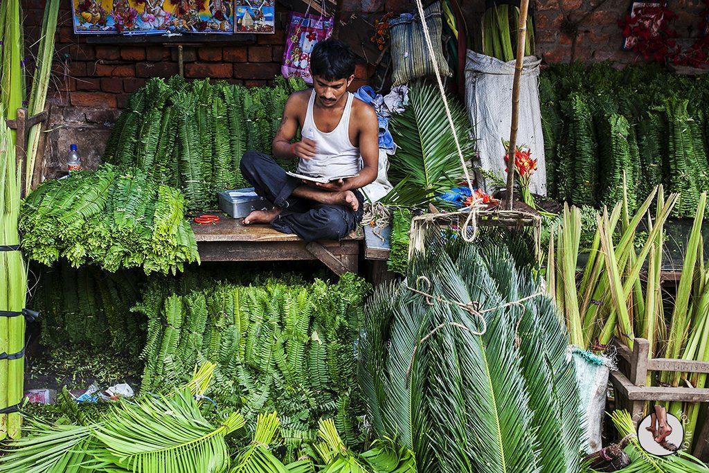 Puesto verde Mercado de las Flores Calcuta