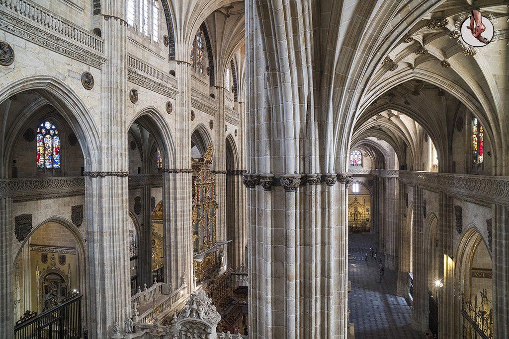 Que ver en Salamanca Catedral Torres ieronimus columnas