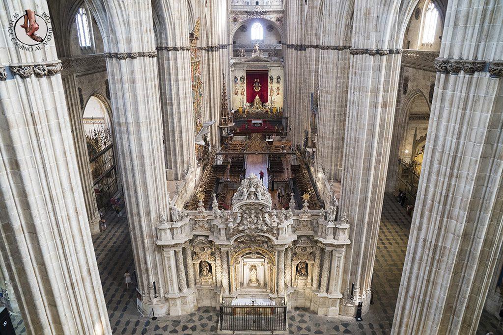 Que ver en Salamanca Catedral Torres ieronimus escudos
