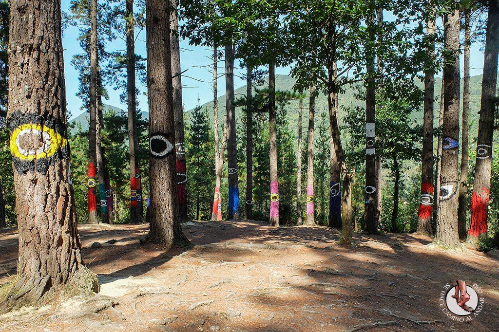 bosque de oma arbol ojos